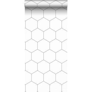 ESTAhome behang hexagon-motief zwart wit