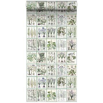 vlies wallpaper XXL bladzijden botanisch bloemen en planten boek licht warm grijs en groen van ESTA home