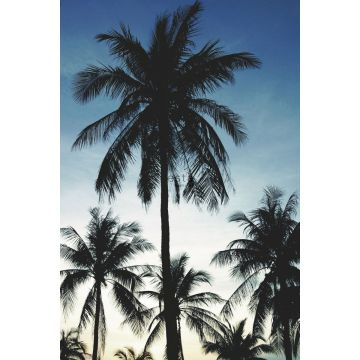fotobehang palmbomen blauw, zwart en beige van ESTA home