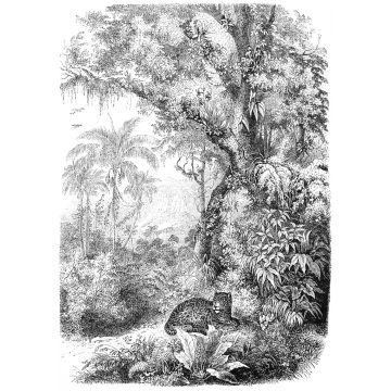 fotobehang jungle-motief zwart wit van ESTA home