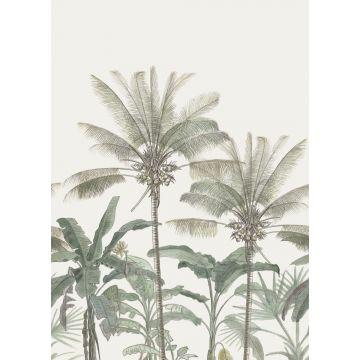 fotobehang palmbomen lichtbeige en vergrijsd groen van ESTA home
