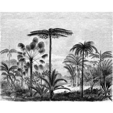 fotobehang tropisch landschap met palmbomen zwart wit van ESTA home