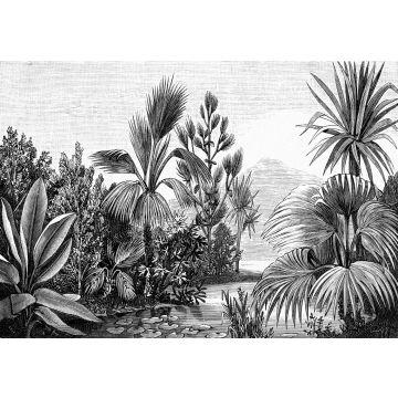 fotobehang tropisch landschap zwart wit van ESTA home