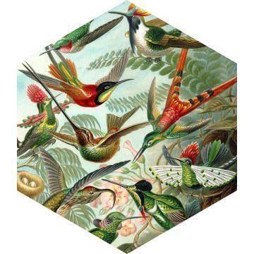 muursticker vogels tropisch junglegroen van ESTA home