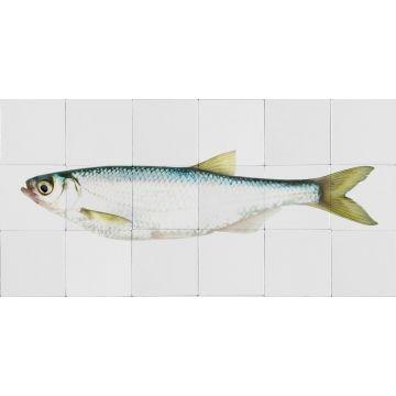 ESTAhome muursticker vis geel en blauw