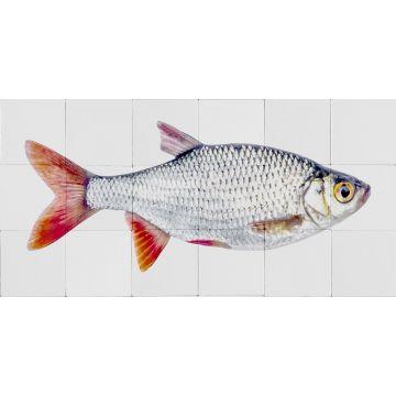 ESTAhome muursticker vis grijs en rood