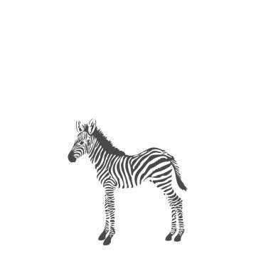fotobehang zebra's zwart wit van Origin