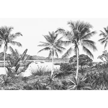 fotobehang landschap met palmen zwart wit van Origin
